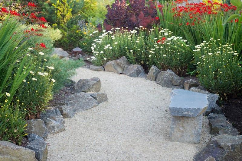 Onderhoudsvriendelijke Tuin Aanleggen : Onderhoudsvriendelijke tuin directplant