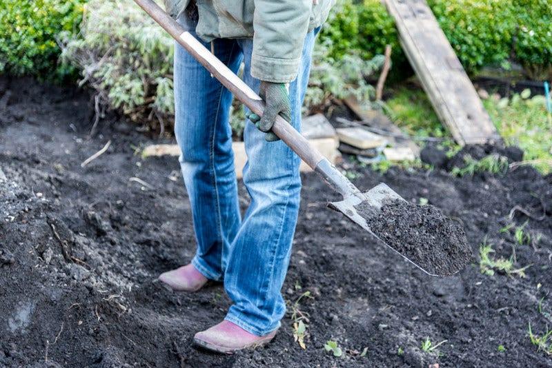 Meststoffen voor de tuin - wanneer en welke kiezen