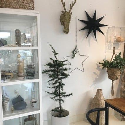Kerstboom alternatief en traditionele kerstbomen