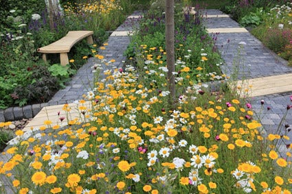 Natuurlijke wilde tuin - tips voor ontwerp en planten