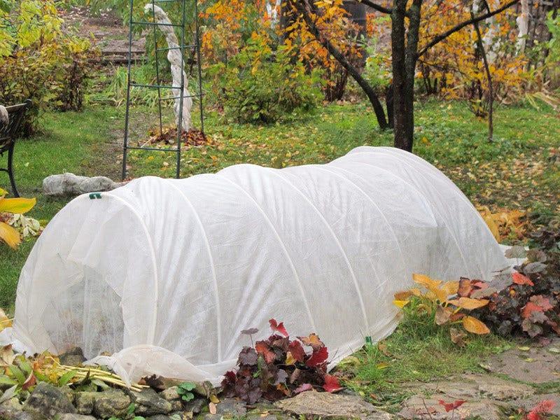 Winterbescherming voor planten