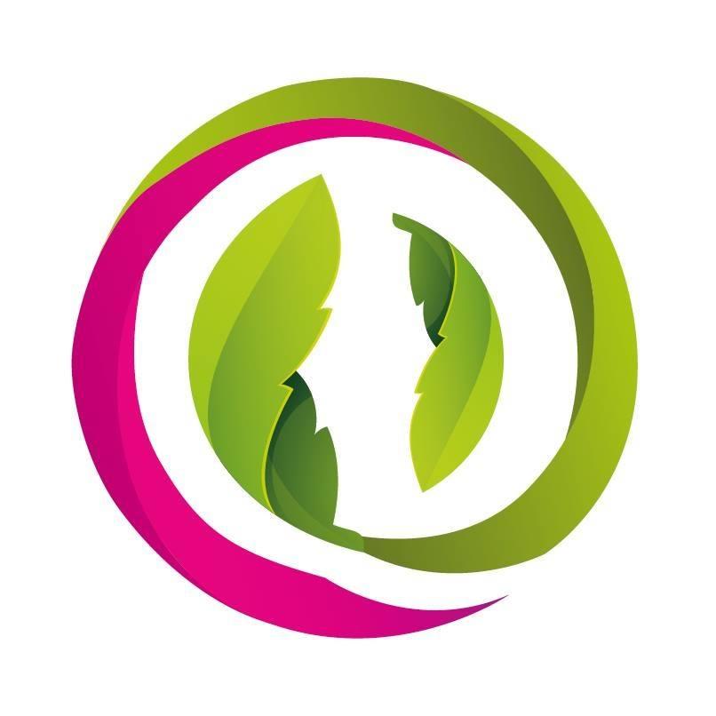 Zilverbonte vederesdoorn (Acer negundo 'Variegatum')
