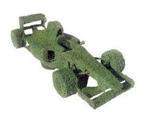 Formula 1 (Ligustrum delavayanum)