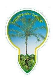 Erwtenstruik (Caragana arborescens 'Lobergii')