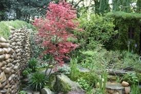 Japanse tuin overzicht
