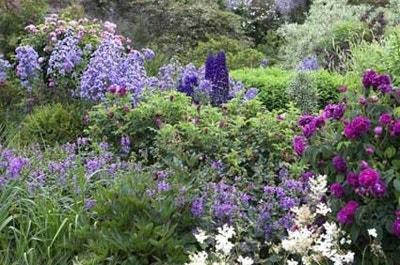 Engelse tuin met border