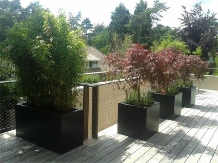 Plantenbakken Voor Buiten Groot.Plantenbakken Vullen Directplant